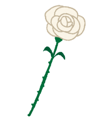 chichinohi_rose_white